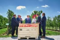 Koning en Koningin in gesprek met bestuurders bij de proeftuin. Op de voorgrond kisten met appels opdruk Fruit Masters 2018, op de achtergrond bomen in de boomgaard en blauwe lucht met kleine witte wolken.